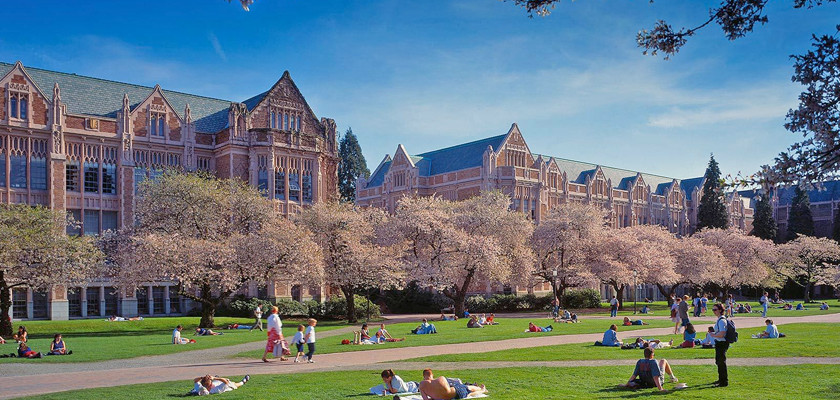 University Of Washington  >> University Of Washington Seattle Geriatricnursing Org