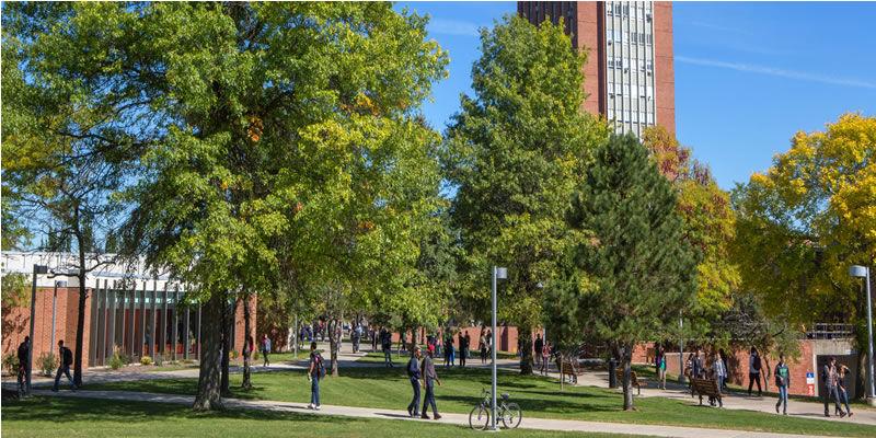 Binghamton University (BU)