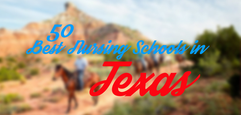 50 Best Nursing Schools in Texas | GeriatricNursing org